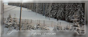 Webcam - Paltinis