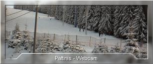 Webcam - Paltinis
